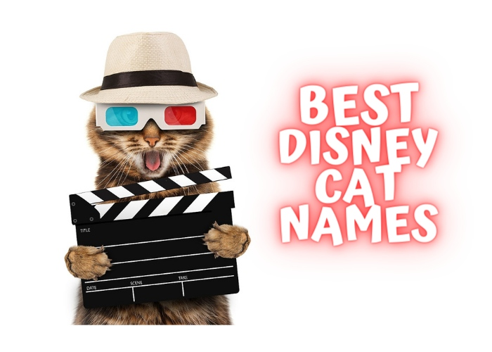 disney cat names list